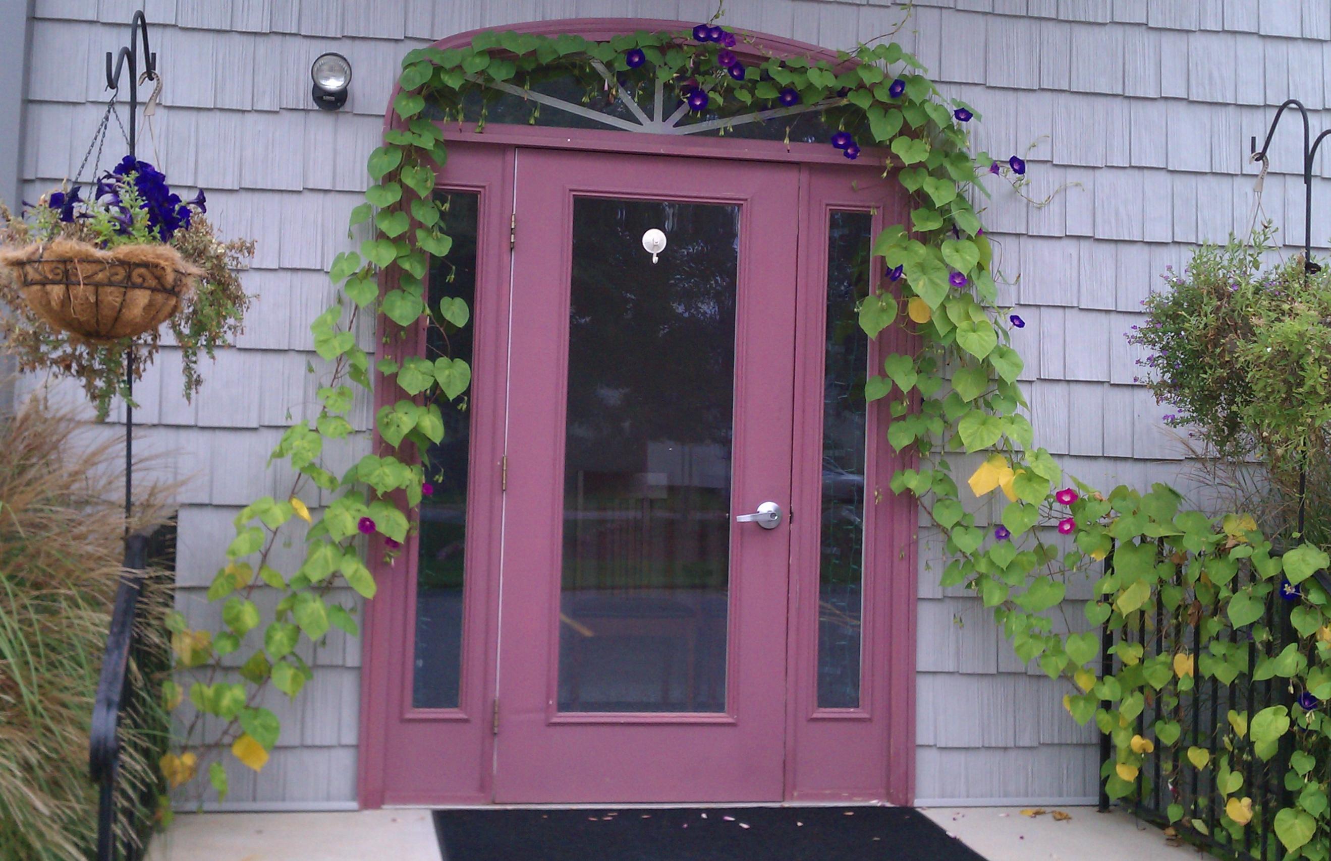 Contact - front door